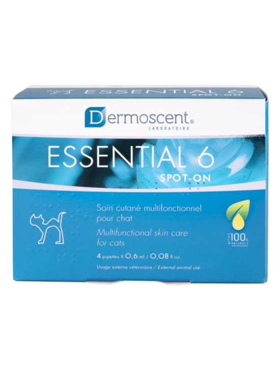 Essential 6® spot-on para gatos